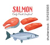 Stock vector set salmon vector illustration fillet steak and fish salmon in cartoon style seafood product 519335005