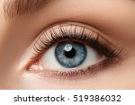 close up view of beautiful blue ... | Shutterstock . vector #519386032