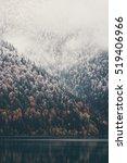 Foggy Coniferous Forest Lake Wild - Fine Art prints
