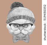 Stock photo portrait of persian cat with glasses hat and bow tie hand drawn illustration 519450352
