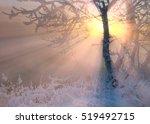 Winter Landscape. The Sun...
