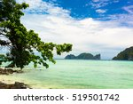 under trees jungle and sea  | Shutterstock . vector #519501742