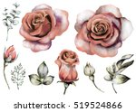 set vintage watercolor elements ... | Shutterstock . vector #519524866