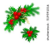 christmas holly with berries.  | Shutterstock . vector #519591016