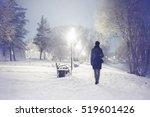 Snowfall In The City Park....