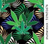 marijuana leaves background..... | Shutterstock .eps vector #519651676