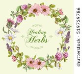 vector round wild flowers and... | Shutterstock .eps vector #519739786