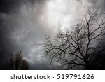 Dramatic Clouds Behind Tree