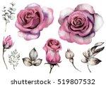 set vintage watercolor elements ...   Shutterstock . vector #519807532