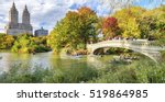 beautiful foliage colors of new ... | Shutterstock . vector #519864985
