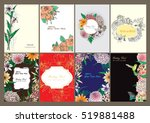 vector set butterflies and... | Shutterstock .eps vector #519881488