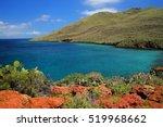 Shoreline Of Rabida Island In...