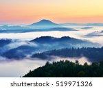 Autumn Landscape. Gentle  Mist...
