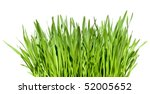 tuft of grass isolated over white background - stock photo