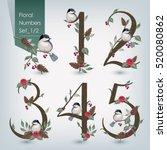 vector illustration of floral...   Shutterstock .eps vector #520080862