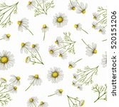 watercolor seamless pattern... | Shutterstock . vector #520151206