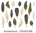 colorful bird feathers  gold... | Shutterstock .eps vector #520181308