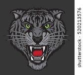 tiger illustration  typography  ... | Shutterstock .eps vector #520213576