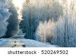 Winter Landscape. Trees In...