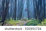 scene with blue mist in autumn... | Shutterstock . vector #520351726