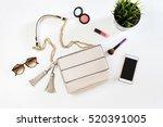 fashion woman handbag with... | Shutterstock . vector #520391005