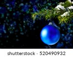 Christmas Tree Branch With Sno...
