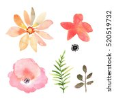 floral set. collection with... | Shutterstock . vector #520519732