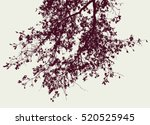 Oak Branch  In The Autumn