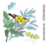 small bird on branch   summer... | Shutterstock .eps vector #520618666