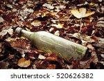 Dirty Bottle Abandoned In The...