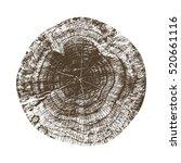 vector wood texture of wavy... | Shutterstock .eps vector #520661116