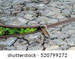 environmentally friendly... | Shutterstock . vector #520799272