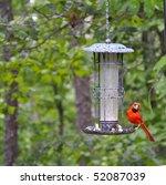 cardinal on bird feeder   Shutterstock . vector #52087039