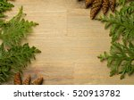 green thuja with brown cones on ...   Shutterstock . vector #520913782