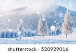 winter landscape trees and... | Shutterstock . vector #520929016