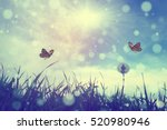 Stock photo butterfly 520980946