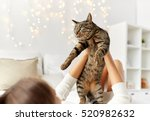 Stock photo pets comfort christmas winter and people concept young woman with cat lying in bed at home 520982632