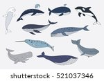whale color collection | Shutterstock . vector #521037346