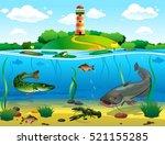 River Underwater World