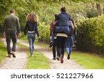 friends walk and piggyback in a ... | Shutterstock . vector #521227966