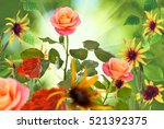 beautiful flowers on a green... | Shutterstock . vector #521392375