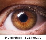 human eye close up | Shutterstock . vector #521438272