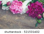 peony background. fuchsia  pink ... | Shutterstock . vector #521531602