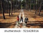 Friends Walking Exploring...