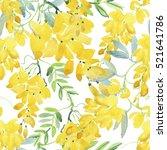 Blossoming Yellow Acacia Or...