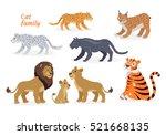 Cat Family. Felidae Family Of...