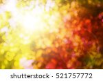 Blurred Nature Background...