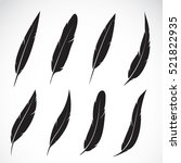 vector group of feather on... | Shutterstock .eps vector #521822935