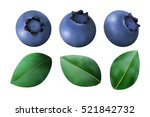 set of blueberries and leaves... | Shutterstock .eps vector #521842732