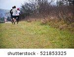 group of professional cross...   Shutterstock . vector #521853325